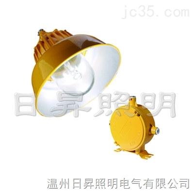 防爆道路灯RFB715B欧司朗光源
