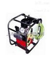 优质供应PEA4-12-380B 液压扳手专用泵