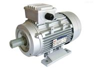 意大利GM ELETTROFRIGO电机CP260.60